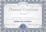 Diamond Support Partner