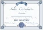Silver Support Partner
